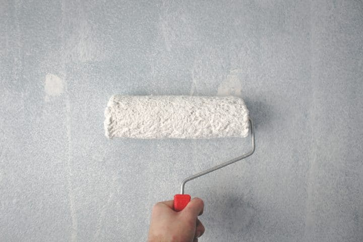 Paint Roller and Brush to paint your home
